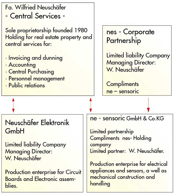 Neuschäfer Electronic History
